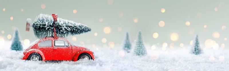 Weihnachtstanne24 liefert deinen Weihnachtsbaum