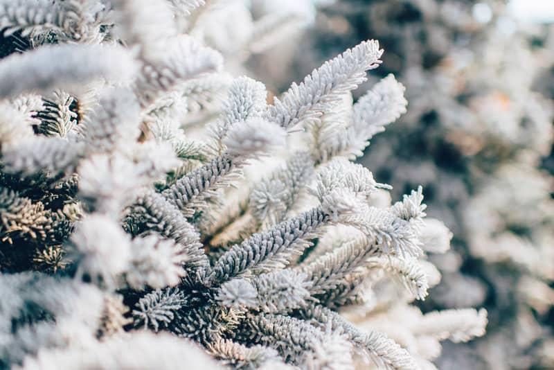 Weißer Weihnachtsbaum